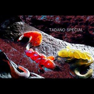 画像4: TADANO SPECIAL