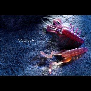 画像4: SQUILLAキット