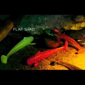 画像3: FLAP SHAD